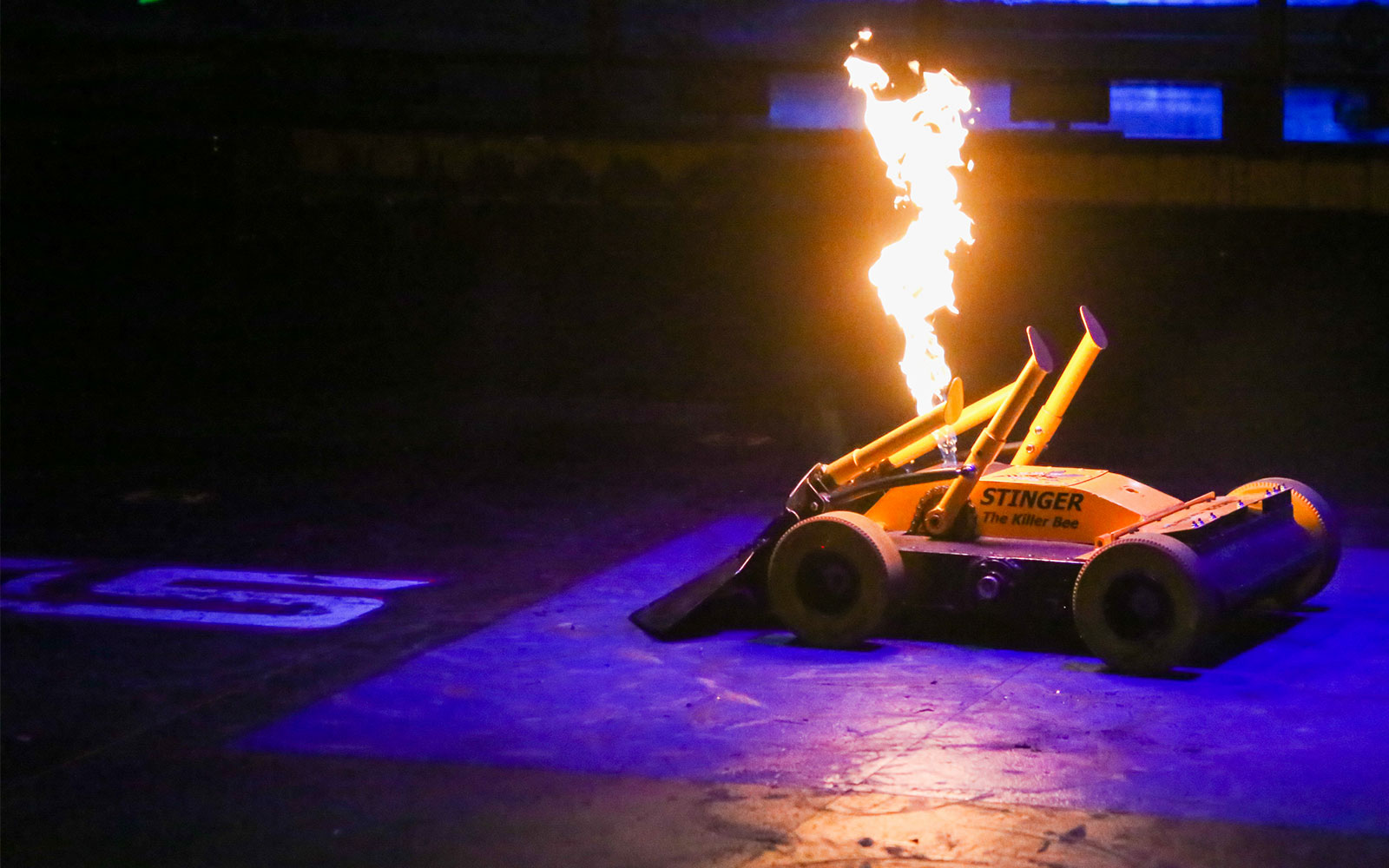 Meet the BattleBots